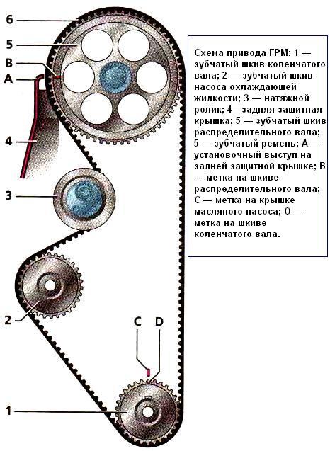 Схема ремня грм на приоре